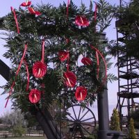 museo-minero-andorra-jardines-012